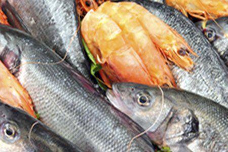 degli scampi e del pesce