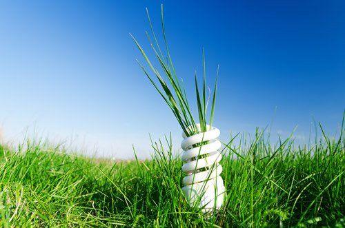 Lampadina appoggiata sull`erba