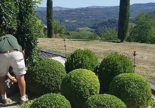 Manutenzione giardini a Montelupo Albese, Cuneo