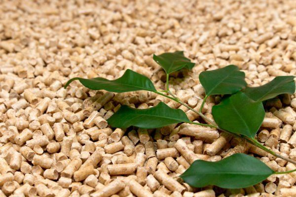 del pellet e delle foglie