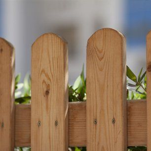 A timber picket fence