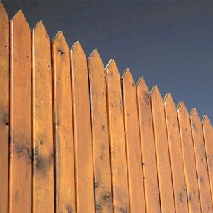 A timber fence with pointed top panels
