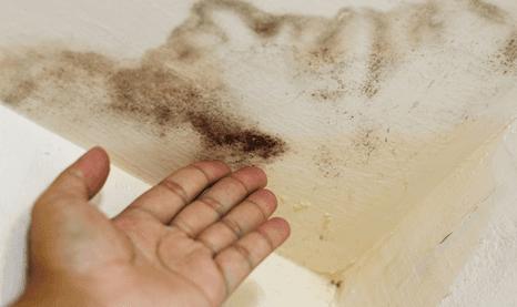 damp ceiling