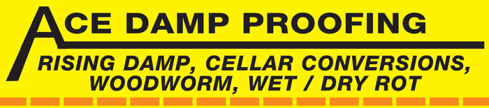 ACE DAMP PROOFING logo