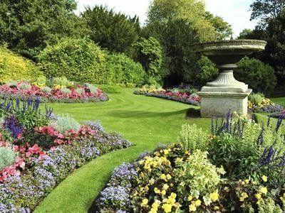un giardino con delle piante fiorite