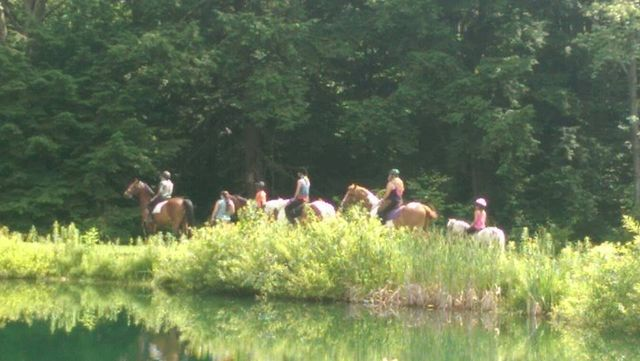 Rosebud stables summer camps trail rides