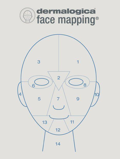 Face mapping sketch