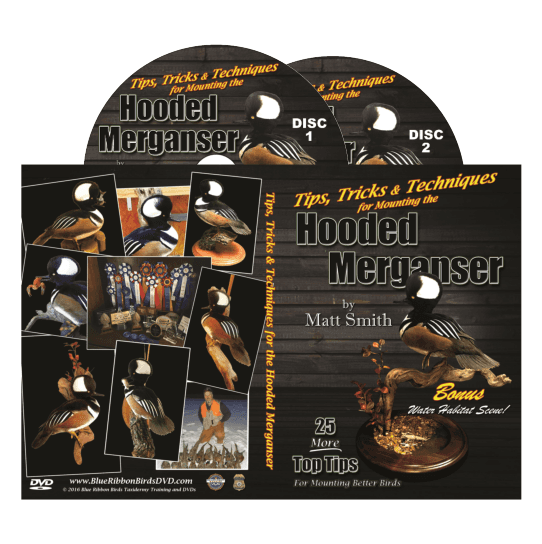 Hooded Merganser DVD