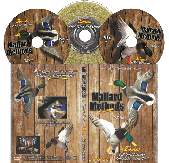 Mallard Methods DVD