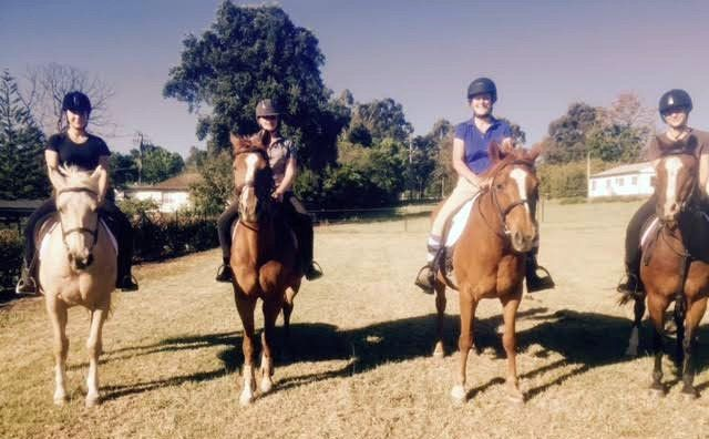 lessons at sydney hills horse riding centre