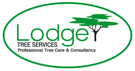 Lodge TREE SERVICES logo