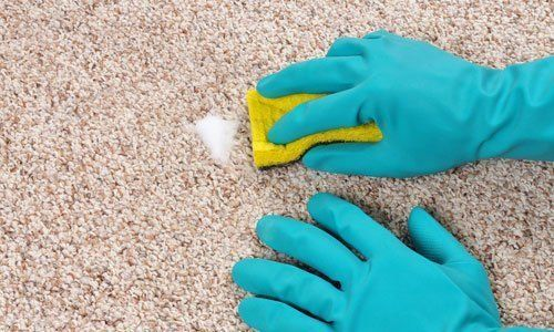 top-quality carpet cleaning