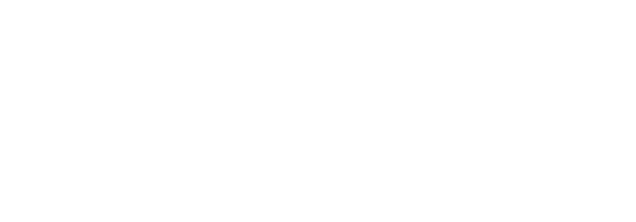 Global Computer & Technology Services