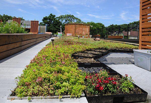Creando giardini ,creando ambiente