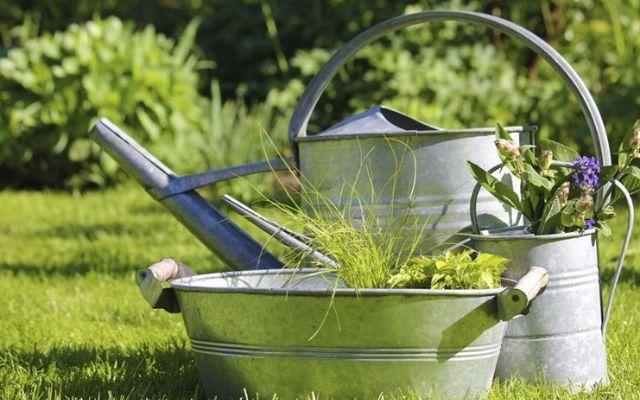 Lattine di irrigazione in giardino