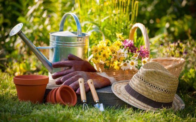 Strumenti di giardinaggio e un cappello di paglia sull'erba nel giardino