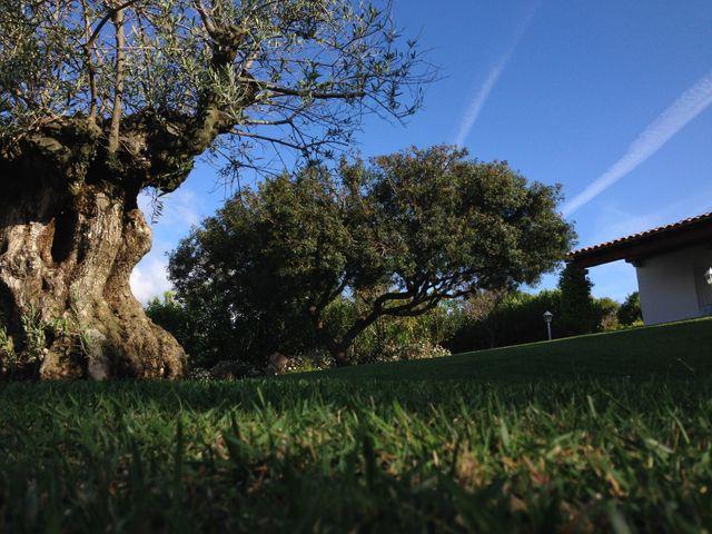 Scavatrice al lavoro di Impresa Giardini a Cannigione