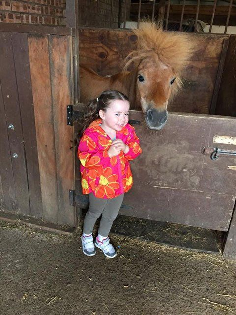 A small girl with a horse