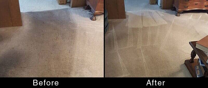 Residential And Commercial Cleaning White Glove Carpet