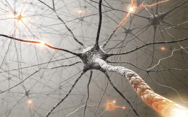 Presso lo studio oeprano medici esperti in neurologia.