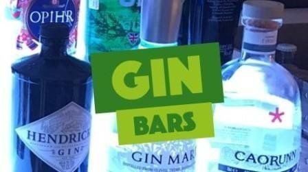 Mobile Gin Bars by Steve the Barman