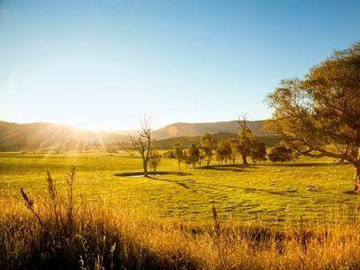 terreno in campagna