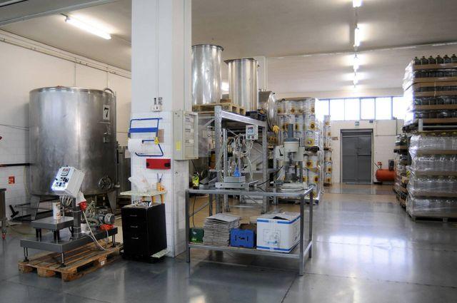 Produzione olio di oliva italiano
