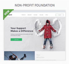Non-Profit Foundation Websites