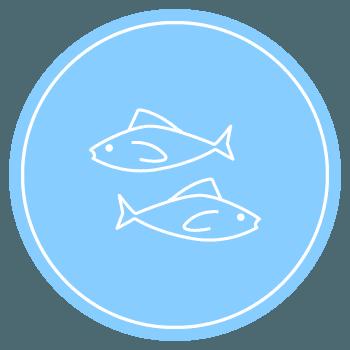 icona dei pesci