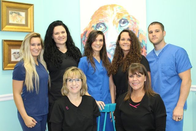 Staff at veterinary hospital