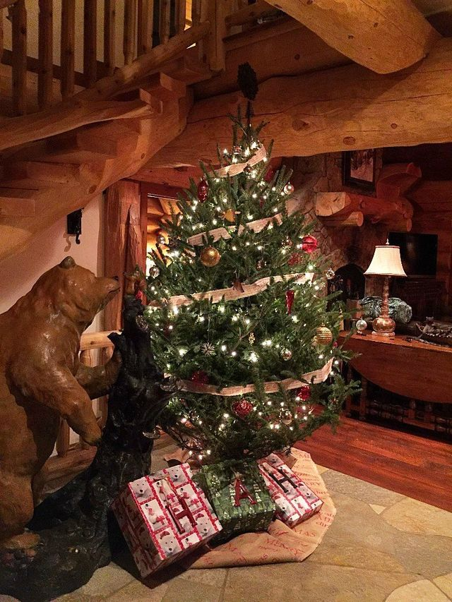Pics Of Decorated Christmas Trees.Christmas Tree And Holiday Decoration In Breckenridge