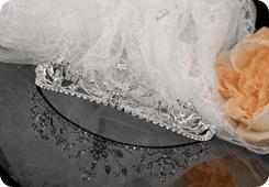 Bridal dresses - Southsea - David Western Bridal - Brides Veil
