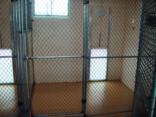 A view from within the dog kennels at Marjon Kennel