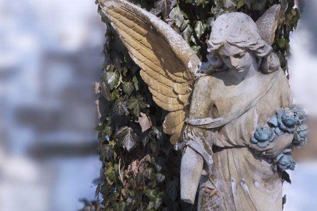 la statua di una donna angelo e dietro dell'edera