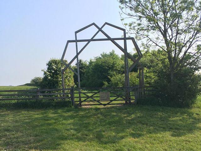 Natural burials in woodland | Sheepdrove Organic Farm