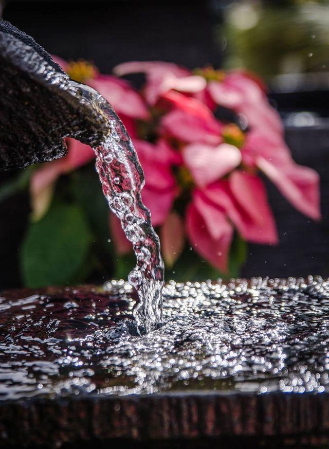Water Feature Design, Redlands, QLD