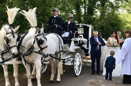 Horse Carriage At A Wedding