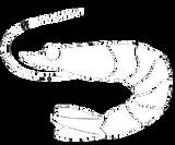 icona gambero