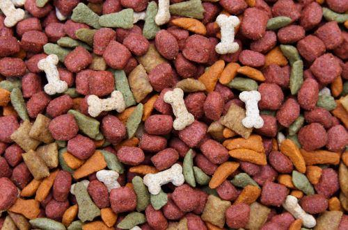dei croccantini per cani