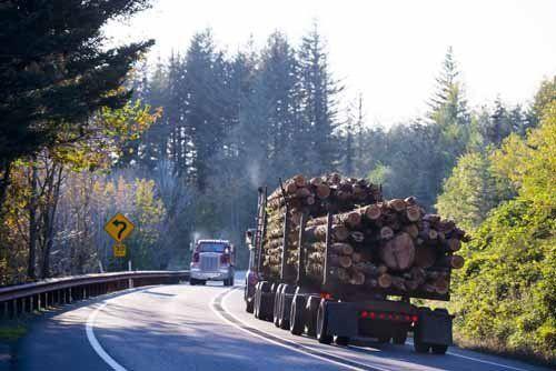 camion caricato con fasci di legno sulla strada
