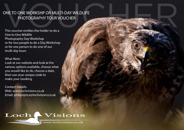 wildlife photography tour gift voucher