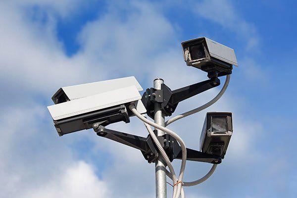 Cameras di televisione installate in un albero