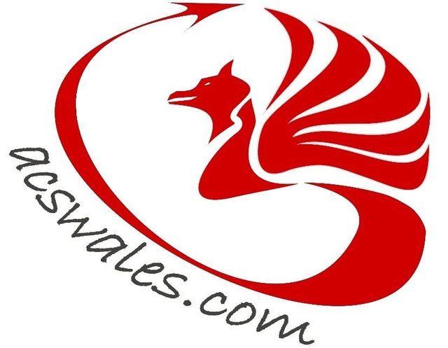 ACS Wales Ltd logo