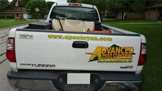 Pest Control College Station, TX
