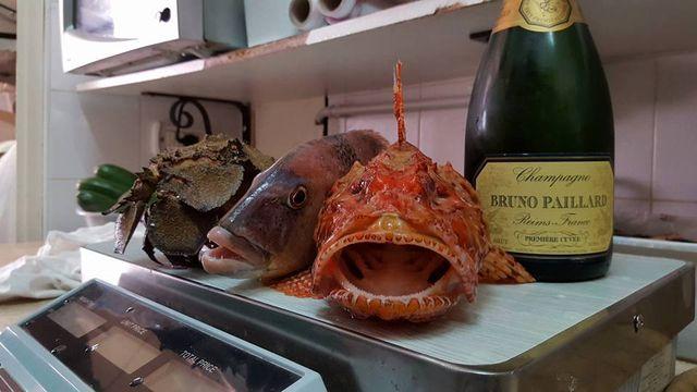 Cucina del ristorante di pesce Da Zi Ottavio di Monopoli