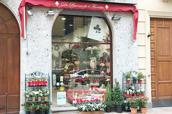 Vista dell'esterno della fioriera De Bernardi il fiorista con dei vasi di fiori e piante