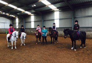Horse riding lessons middlesbrough