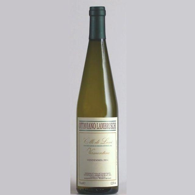 Vermentino wine in Castelnuovo Magra