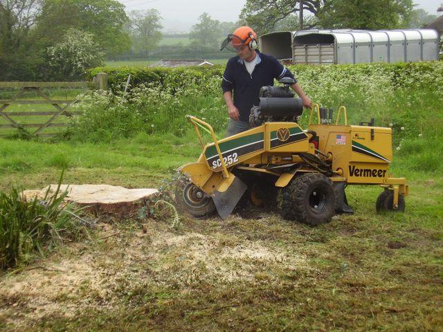 garden clearance tool