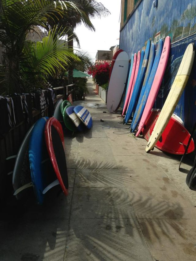 Surf Equipment Rentals-Surfari Surf Shop
